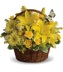 Basket Full of Wishes from Faught's Flowers & Gifts, florist in Jonesboro
